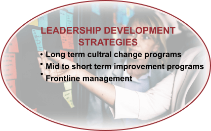 Leadership Development Strategies